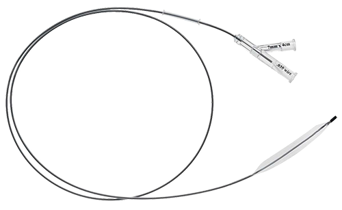 Ureteral Balloon Dilator